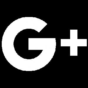 VETTRA Google Plus Icon